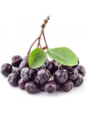 Fresh aronia berries with branches, 1 kg