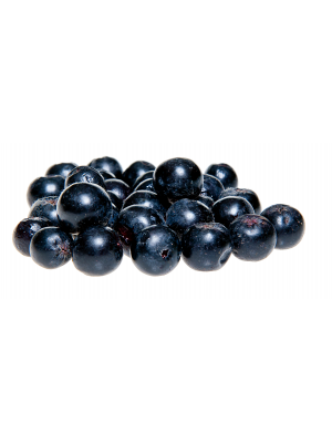 Fresh aronia berries without branches